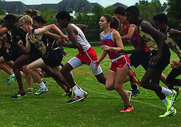 Paint Branch Cross-Country Puts Up Brave Fight at Second Divisional Meet against Northwest and Einstein